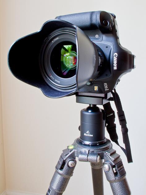 IMAGE: http://DLImaging.zenfolio.com/img/s8/v9/p136022679-4.jpg